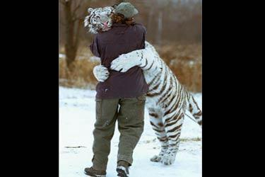 Dejaos de tonterías y ¡qué un Tigre os abrace!
